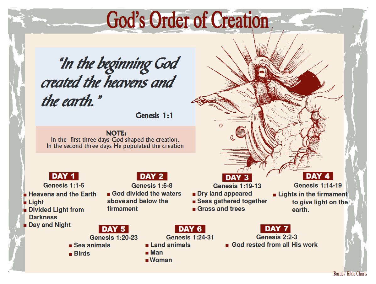 God's Order of Creation Bible Study Tools, Bible Study Journal, Inductive  Bible Study,