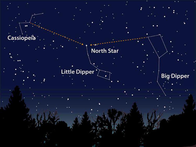 تحديد النجم القطبي