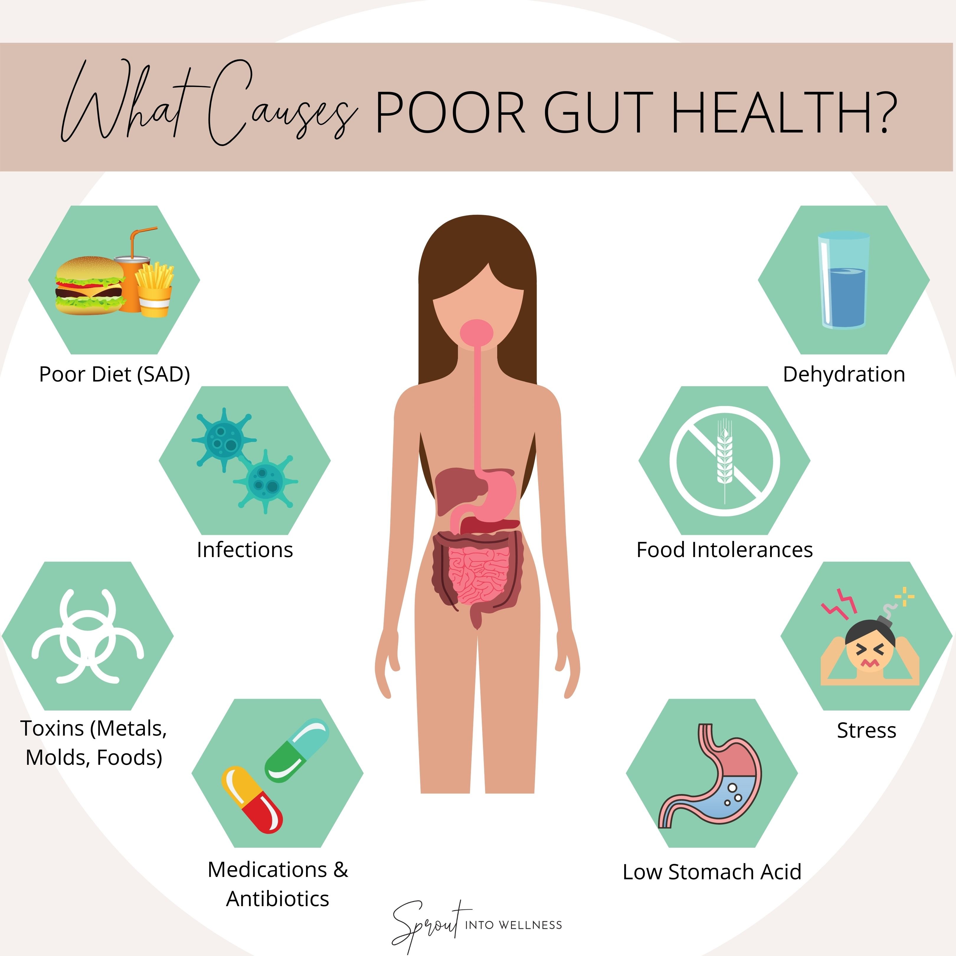 Poor Gut Health Causes & Effects | Sprout Into Wellness | Gut health,  Health, Functional medicine doctors
