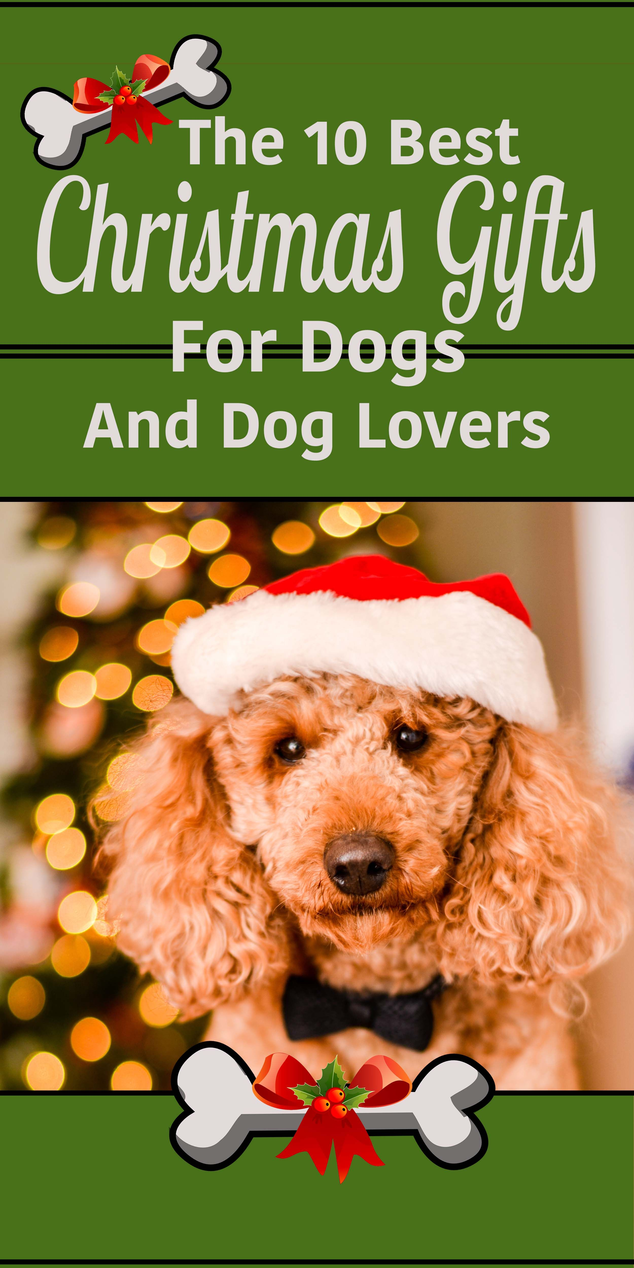Awesome Christmas gift ideas for doodle lovers! Give the best gifts ...