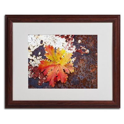 """Trademark Art 'Autumn Rust' by Philippe Sainte-Laudy Framed Photographic Print Size: 16"""" H x 20"""" W x 0.5"""" D, Frame Color: Brown"""