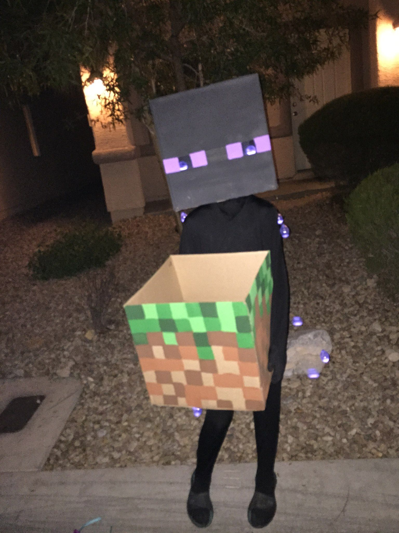 Homemade Minecraft Enderman Costume Halloween Pinterest