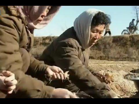 Triều Tiên - Trực tiếp chứng kiến người dân Bắc Triều Tiên đào ...