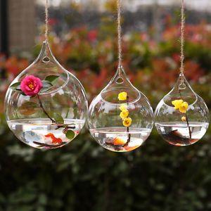 Blown Glass Hanging Vase Hydroponic Terrarium Succulents Planter Flower  Vase Hom