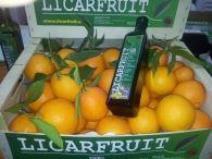 venta de naranjas, mandarinas y aceite de oliva virgen extra