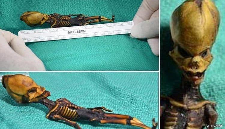 أثار هيكل عظمي غامض عثر عليه في صحراء أتاكاما في تشيلي حيرة العلماء منذ اكتشافه قبل 10 سنوات يبلغ طول الهيكل العظمي 6 بوصات أو 15 Tie Clip Accessories News