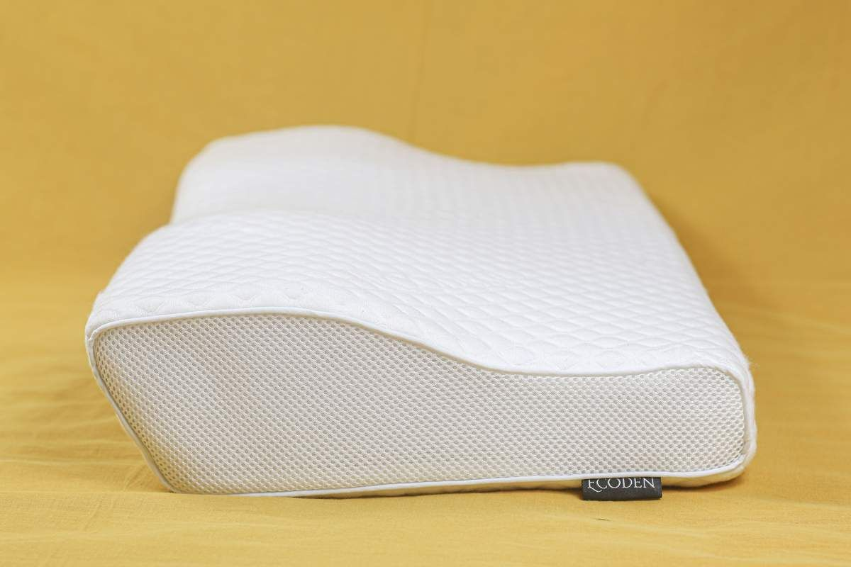 Ecoden™ Bamboo Charcoal Pillow in 2020