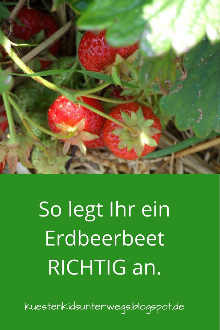 Unterwegs im Garten: Erdbeerbeet anlegen #vertikalergemüsegarten