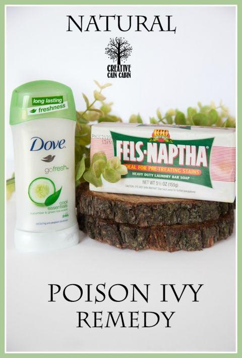 Natural Poison Ivy Remedy | Drug Free | CreativeCainCabin.com