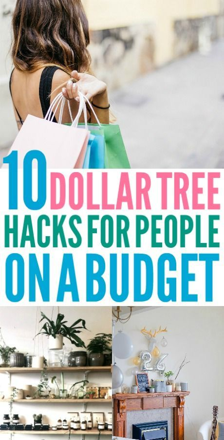 10 Ways You Can Use the Dollar Tree to Save Hundreds