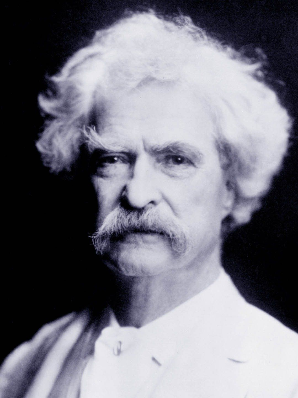Web Design Wordpress Consulting In South Jersey Philadelphia Nj In 2020 Famous Authors Mark Twain Custom Web Design