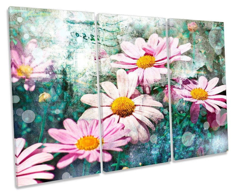 Daisy Floral Flower Field Picture Canvas Wall Art TREBLE Print