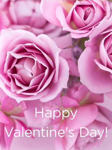 Filled With Pink Roses Happy ValentineS Day Card Some Say That
