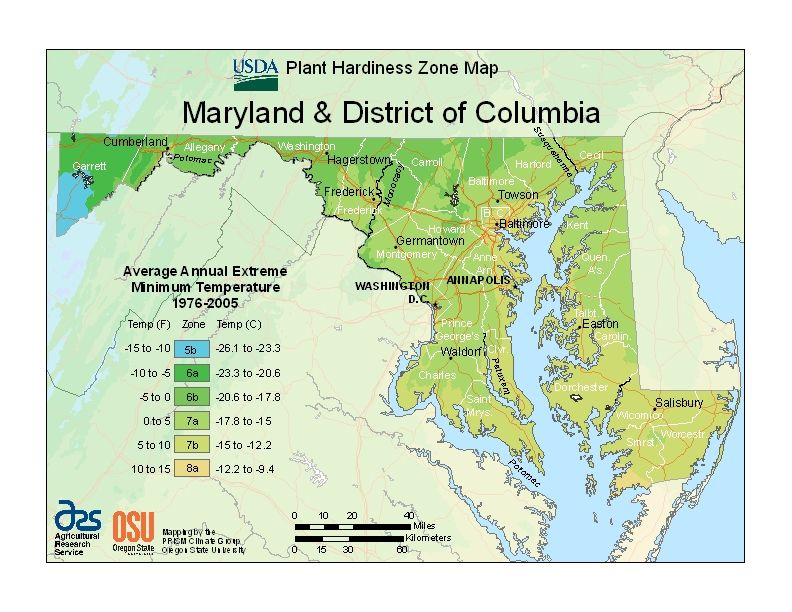 USDA Plant Hardiness Zone Map; in the #DMV we are 5b-8a; who knew ...