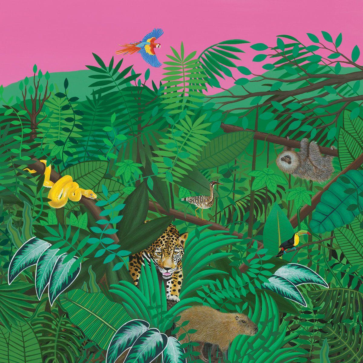 11 Track Album Amazing Nature Super Natural Vinyl