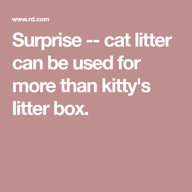 7 Secret Uses For Cat Litter Cat Litter Cat Care Tips Pumpkin Dog Treats