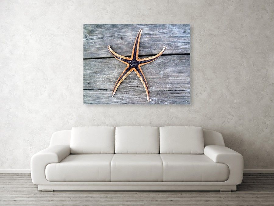 This is a photograph of a purple star fish that I personally found on the boardwalk, it was too late to save it so I wanted it to live forever through photography. This would be beautiful in a beach house. #starfish #walldecor #wallart #wallphoto #purplestarfish #beachdecor #beachtheme