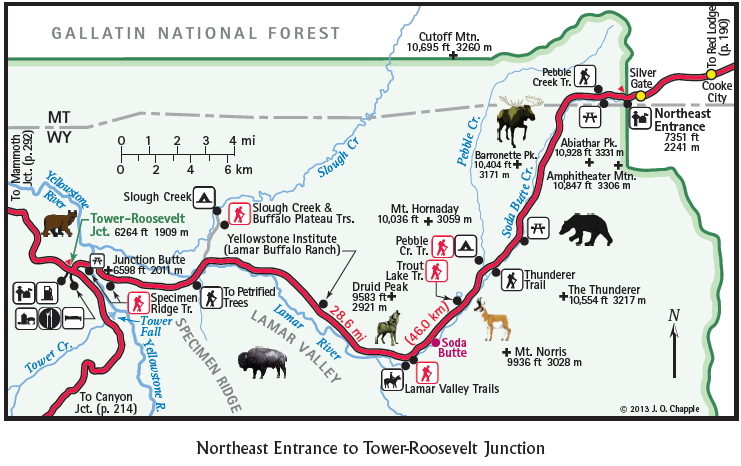 Where Can I See Animals In Yellowstone Park Yellowstone Park Yellowstone Lamar Valley