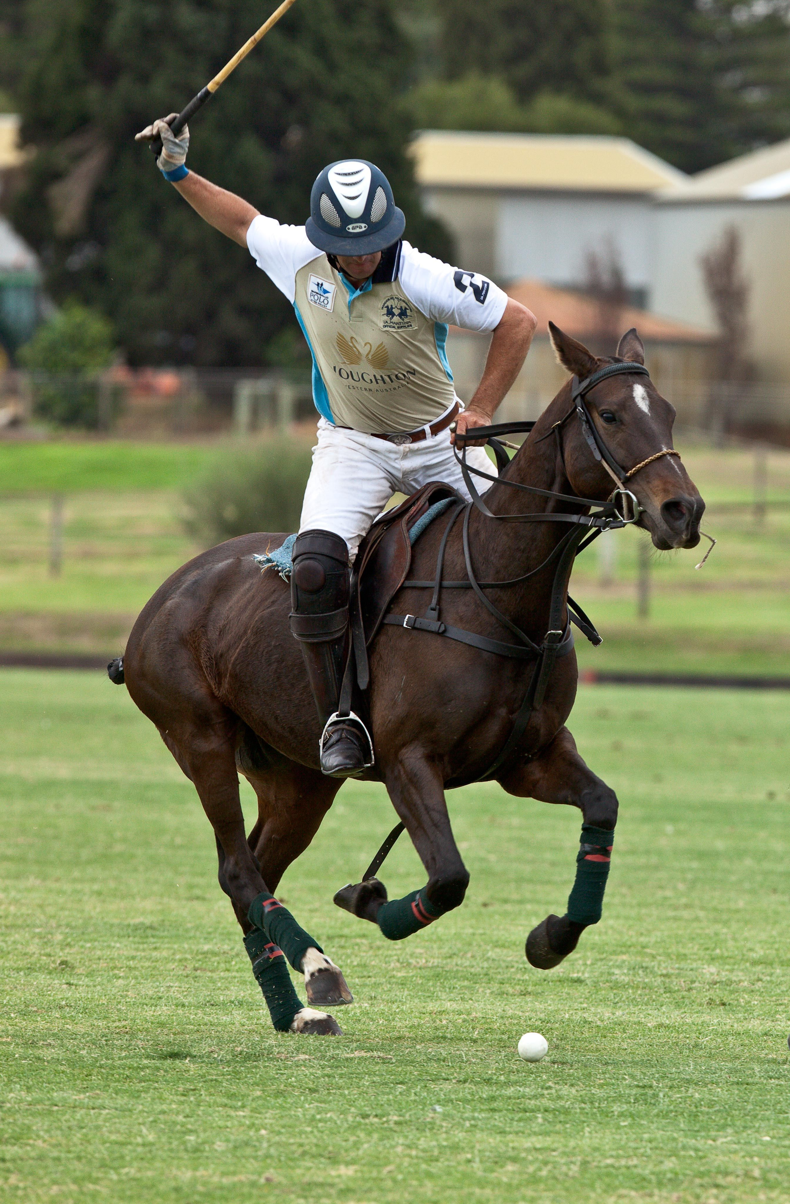 ... sale for tickets to polo in the valley 2012 head to ticketek. db0fe  87ab3 5538f6f66badb