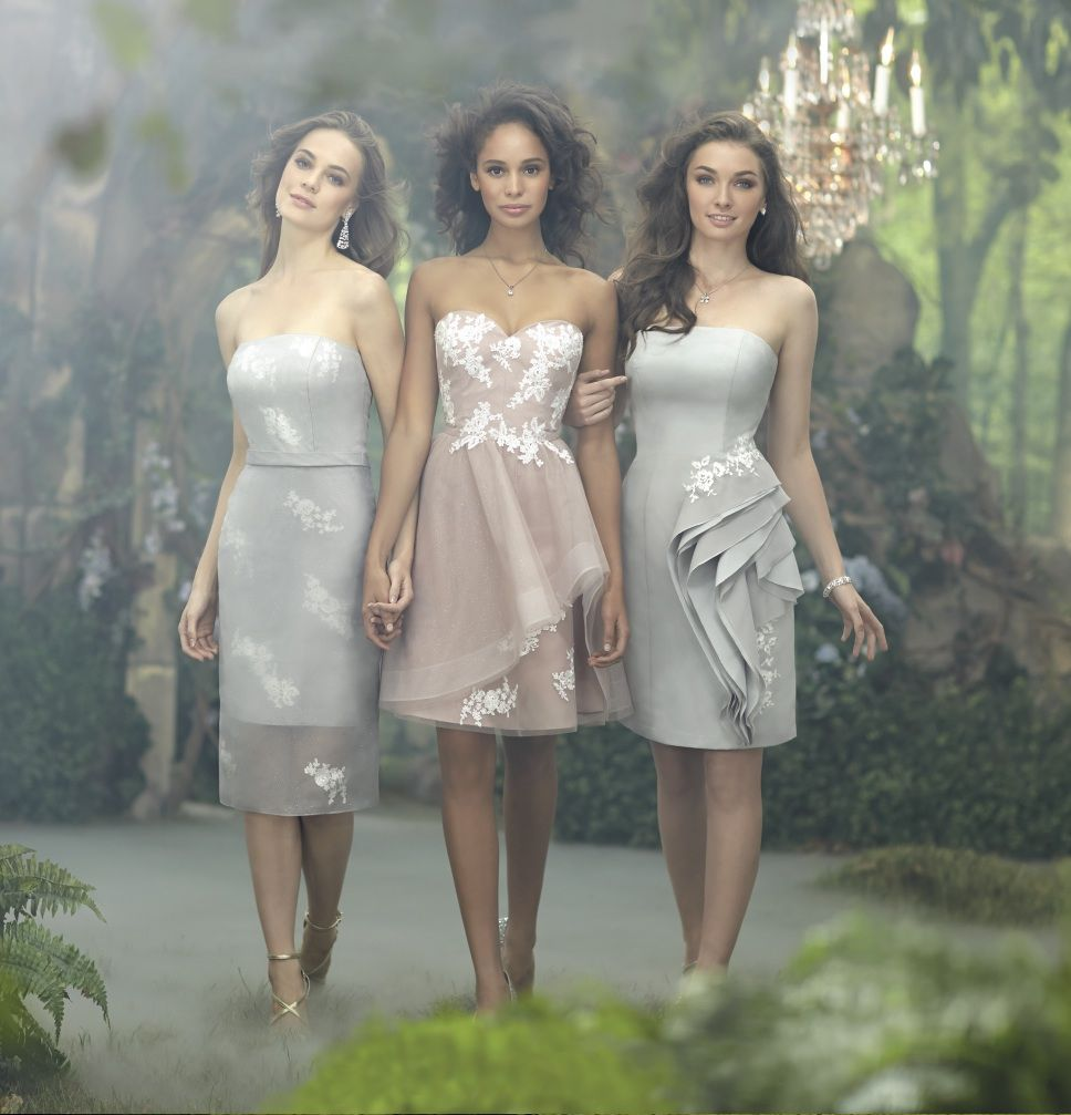 Alfred angelo disney maidens weddings pinterest grey 2014 disney maiden bridesmaid dresses from alfred angelo ombrellifo Gallery