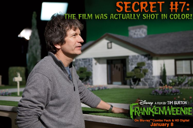 10 Things You Never Knew About Frankenweenie Facebook Disney Fun Facts Tim Burton Creepy Disney