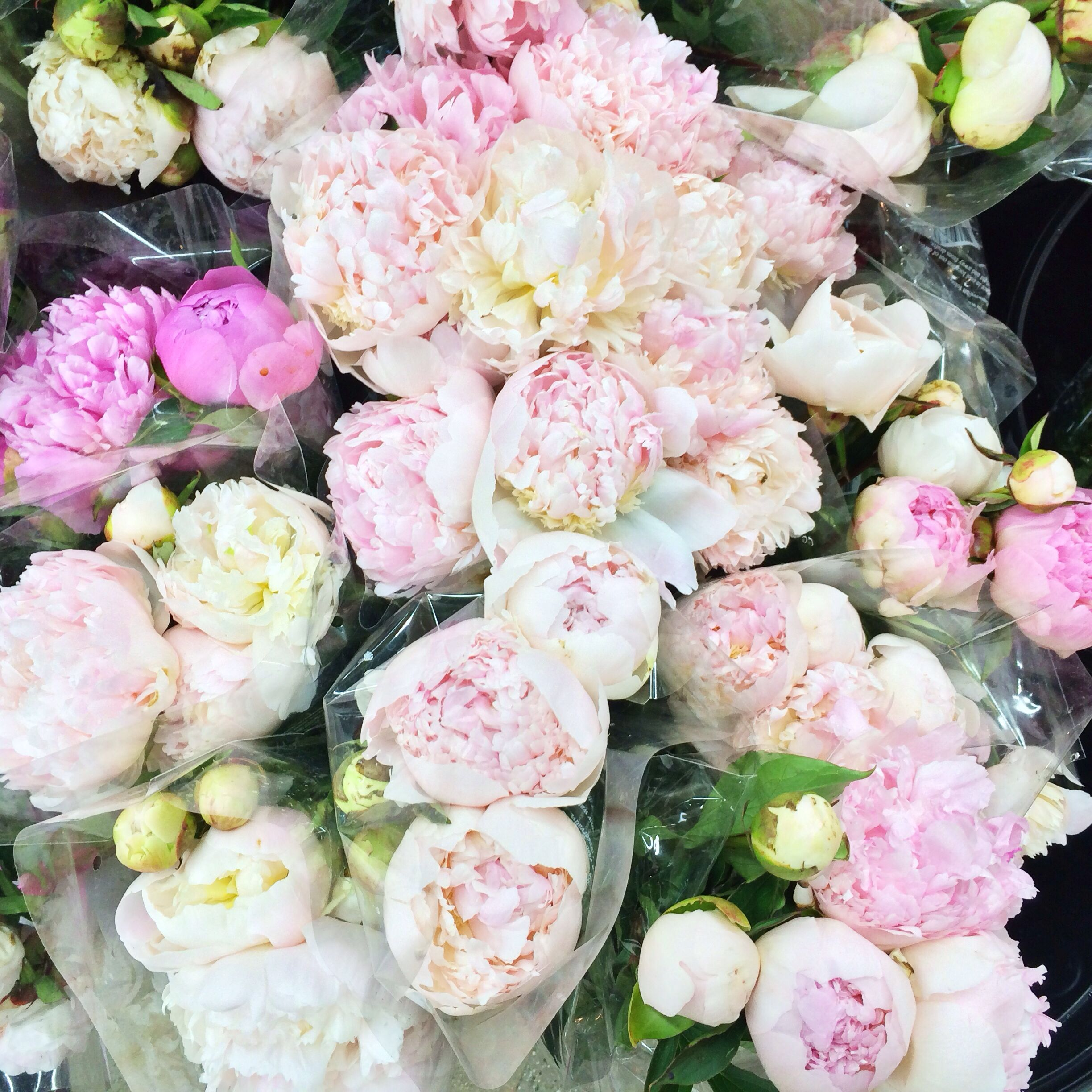 The Pink Peonies pink peonies at trader joe's for $6.99 // stylishpetite