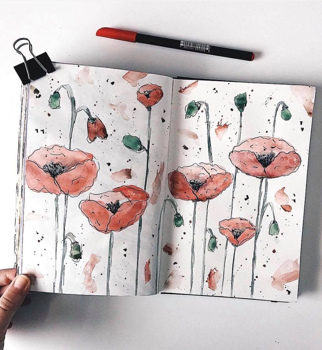 Absolutely Stunning Wild Poppy Flowers By Ig Laia Journal