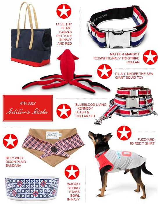 Our Top Dog Picks For 4th July Training Your Dog Training Your