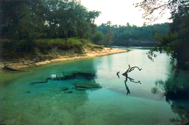 Little River Springs Near Branford Florida Past Vacations - Rivers in florida