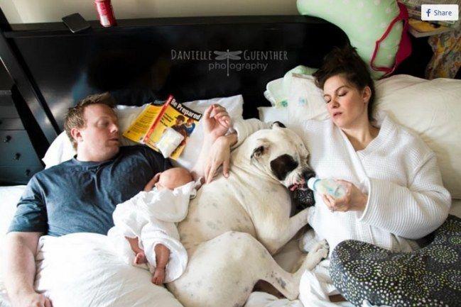 Foto divertenti che dimostrano che essere genitori non è facile