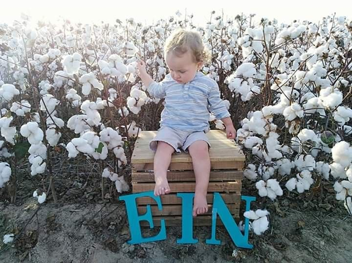 Who Doesnt Love Cotton My Sweet Baby Hes Great So Easy To