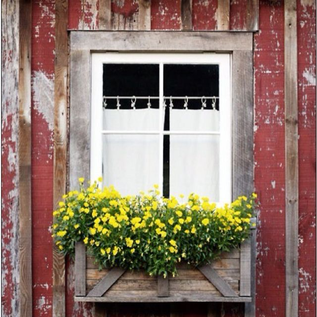 Country Charm, tres shabby and charmed by the yellow flowers