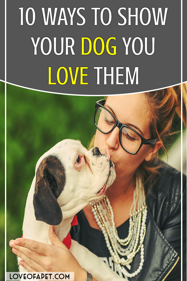 How To Show Your Dog You Love Them 10 Way Love Of A Pet Your Dog Dog Paw Care Dog Lovers