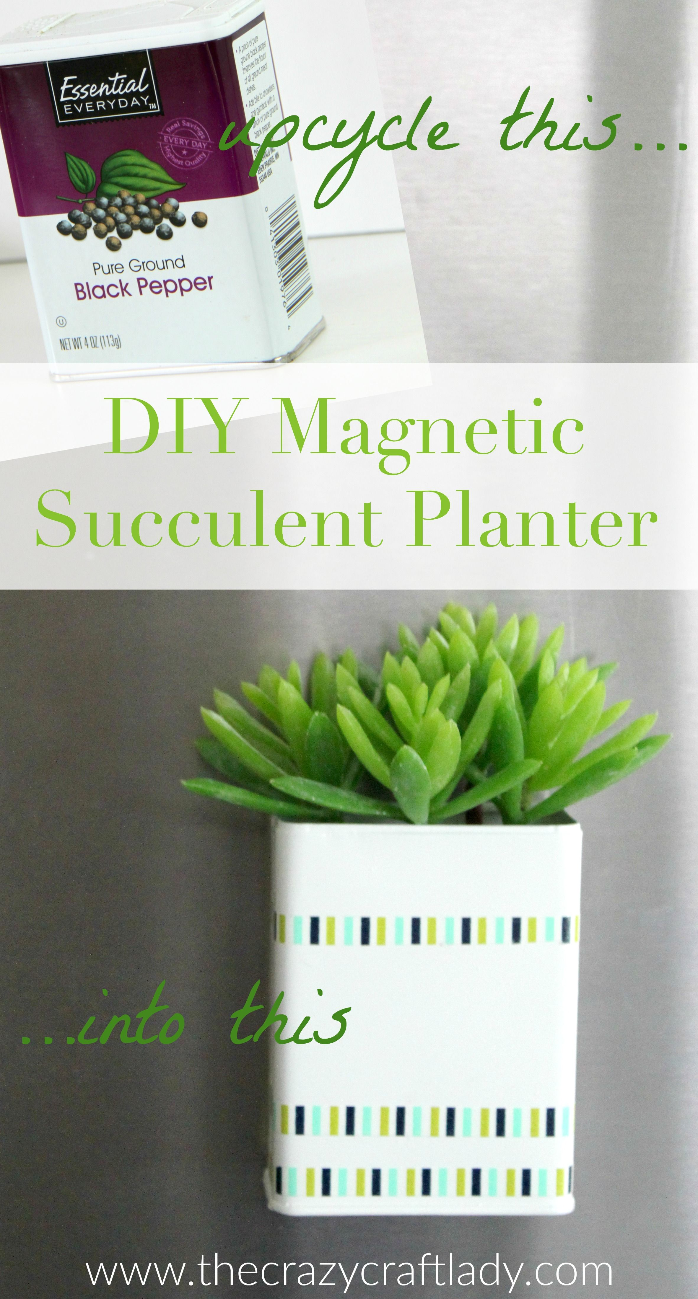 DIY Magnetic Succulent Planter | Simple diy, Upcycle and Planters