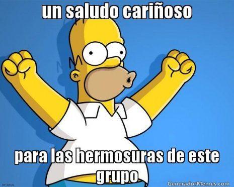 Fotos Y Frases Graciosas Para Tu Grupo De Whatsapp Reflexiones Divertidas Imagenes Para Whatsapp Homer Simpson The Simpsons Memes