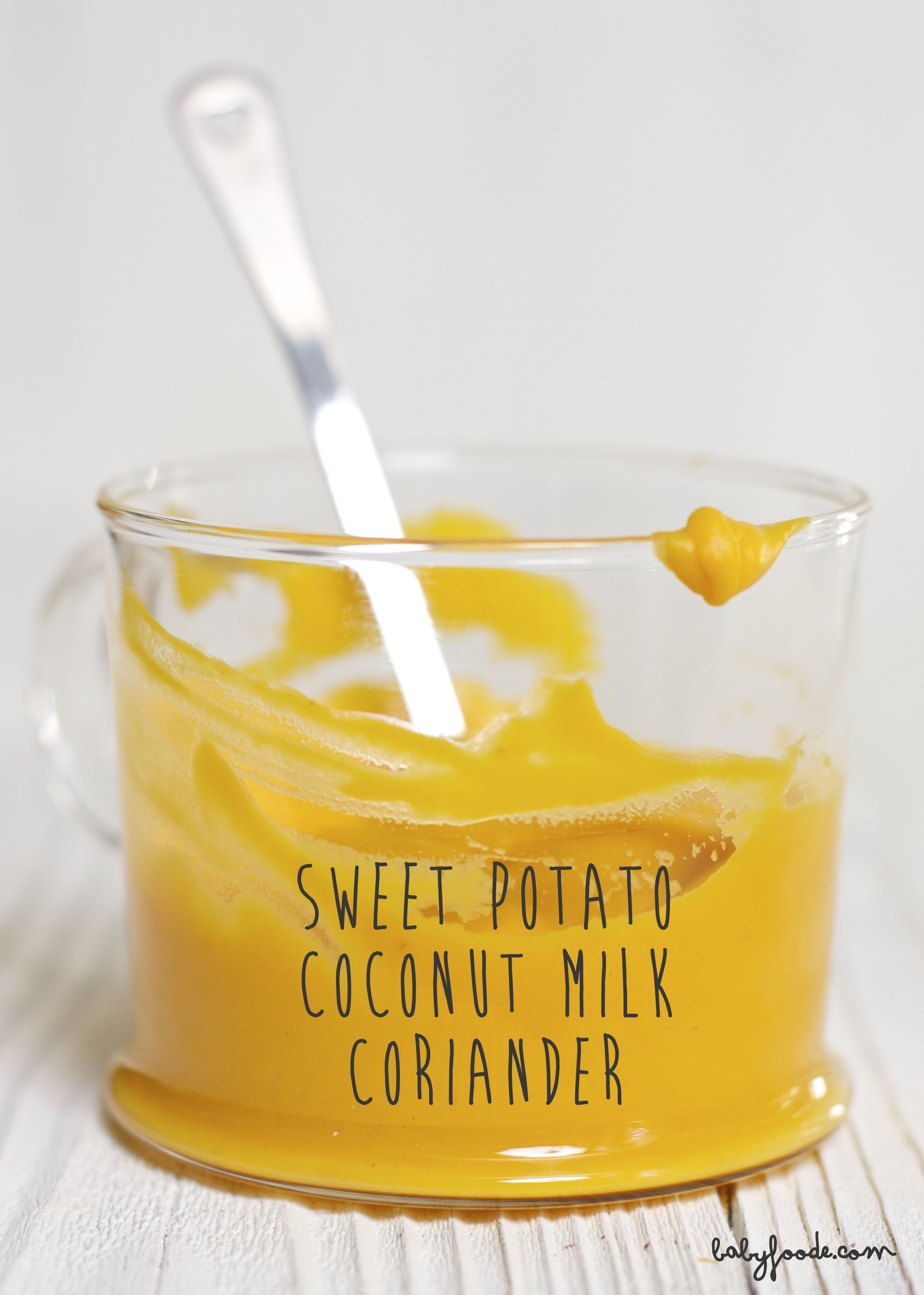 Sweet potato coconut milk coriander baby food puree recipe sweet potato coconut milk coriander puree baby foode organic baby food recipes forumfinder Image collections