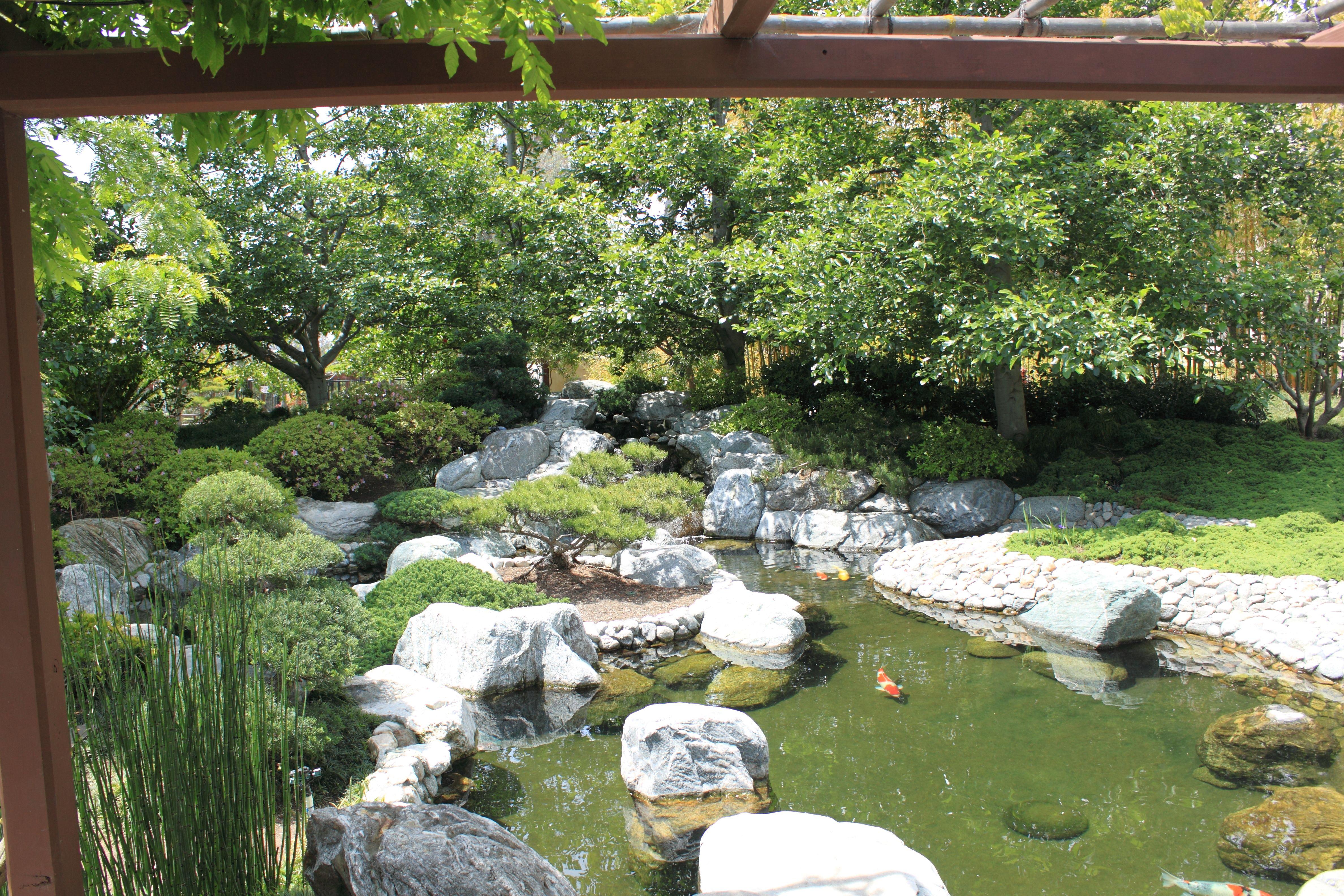 koi pond | Koi Pond Pics | KOI PONDS & GARDENS | Pinterest | Pond ...