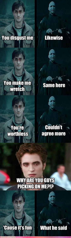 Common Ground Harry Potter Memes Hilarious Harry Potter Vs Twilight Harry Potter Funny