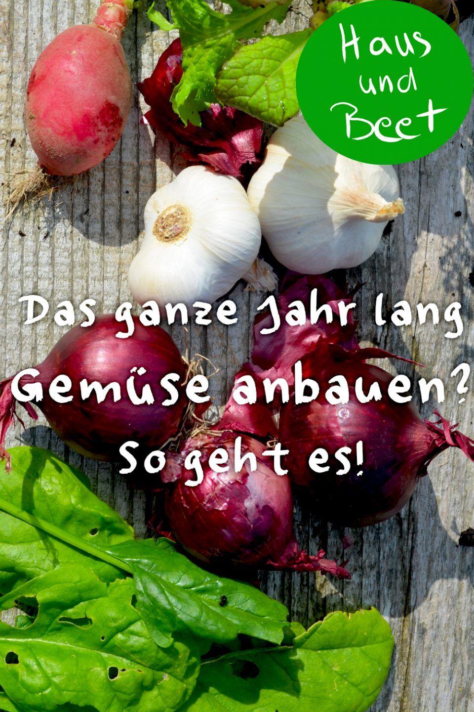 Ab wann kannst du Gemüse anbauen? - Haus und Beet