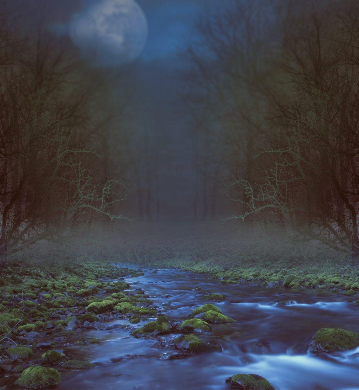 River premade BG by StarsColdNight.deviantart.com on @DeviantArt