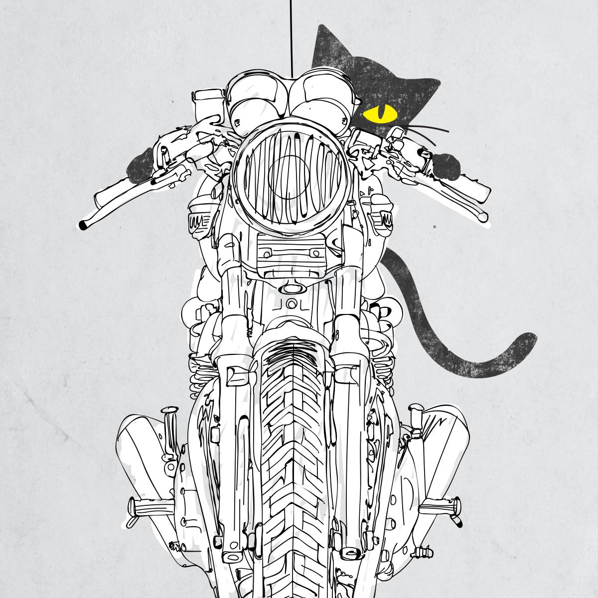 Cat Chicken Motorcycle Art Print On Behance