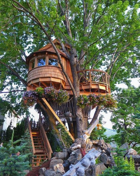 The Best Places To Stay When Traveling That Aren T Hotels Beautiful Tree Houses Cool Tree Houses Tree House