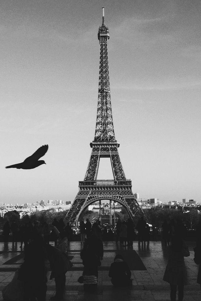 Paris Love Wallpaper Eiffeltower Iphone