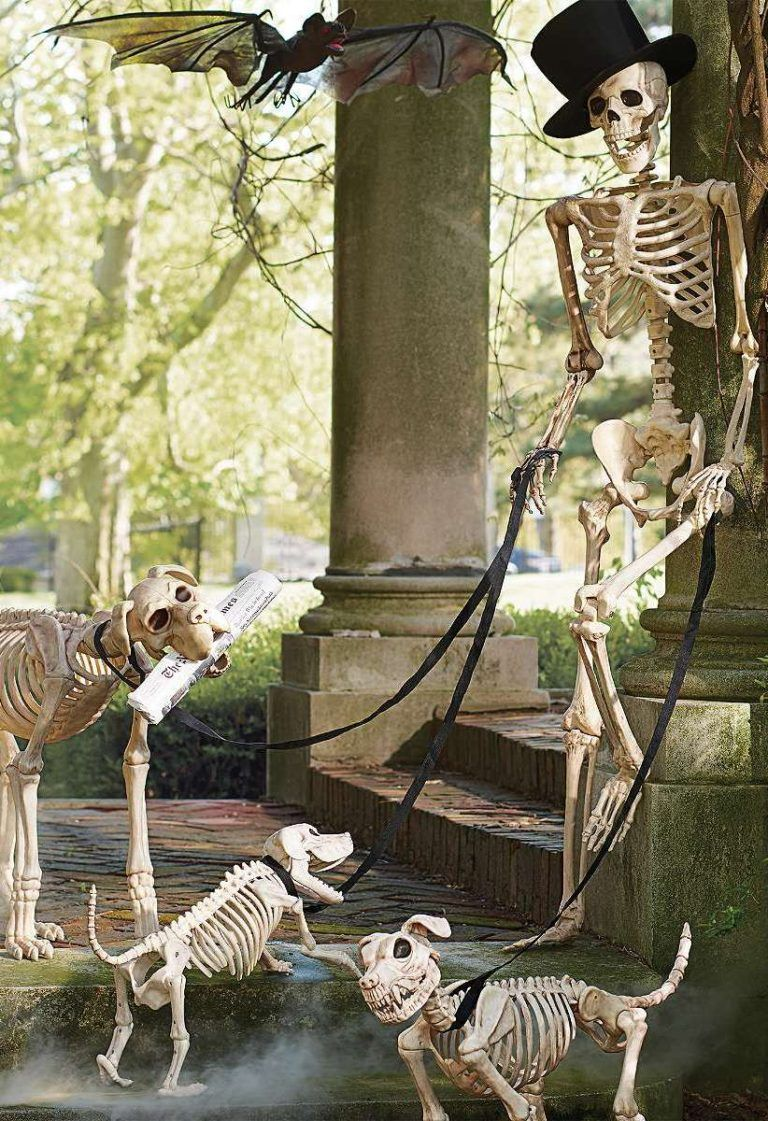 Skeleton Scene Decorations Skeletons Spirit Y