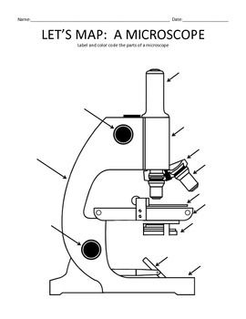 Let S Map A Microscope Let It Be Color Activities Life Science