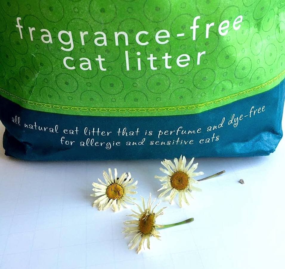 Using Silica Cat Litter To Preserve Flowers