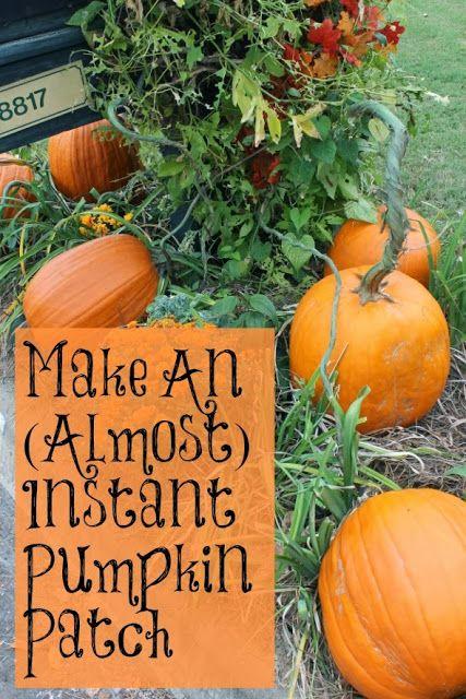 how to make a fake pumpkin patch