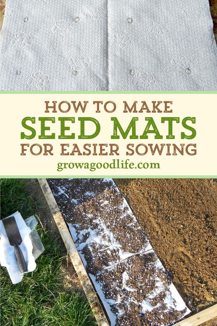 Homemade Seed Mats Or Seed Tapes Spring Vegetable Garden