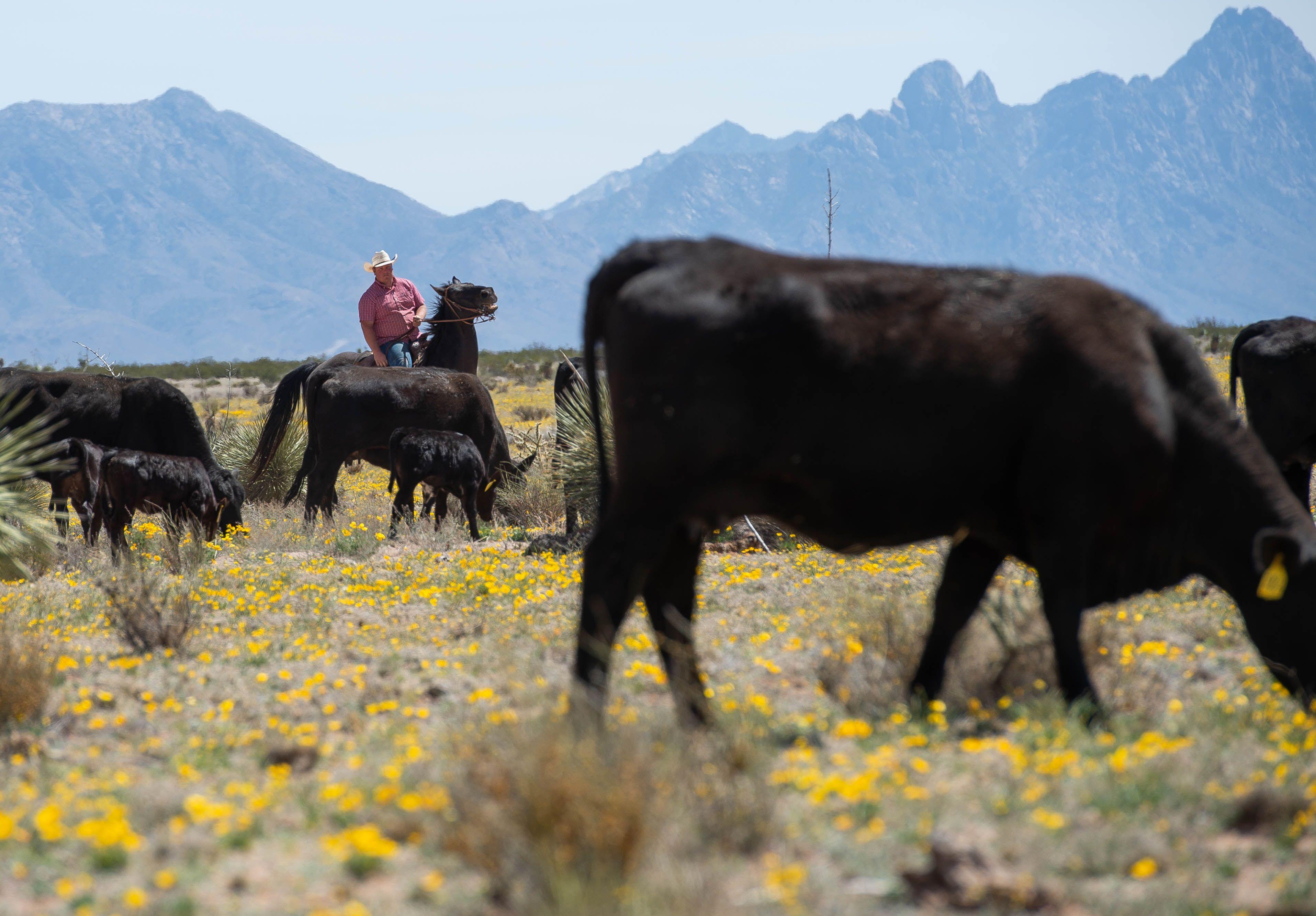 Soil Tests Provide A Scientific Basis For Regulating