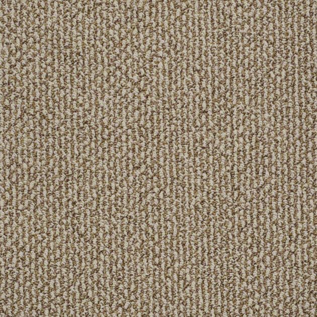 Carpet Carpeting Berber Texture More Lowes Carpet Carpet Runner Plastic Carpet Runner